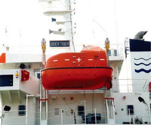 gravity luffing type lifeboat davit