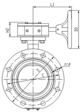 Marine Center Double Flanged Worm Gear Butterfly Valve
