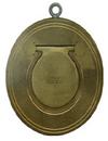 marine board stype check valve