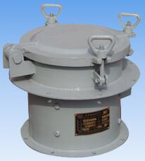 CWZ series marine or navy small sized axial fans